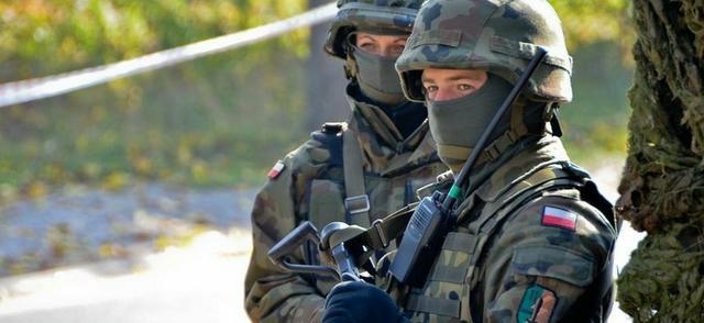 Polská teritoriální obrana