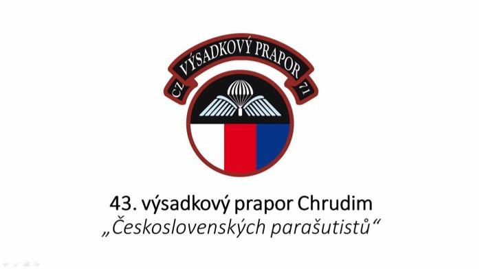 4. výsadková rota AZ: průkopníci nové koncepce aktivních záloh v ČR